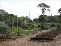 Image for Azalea Community Garden - St. Petersburg, FL