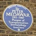 Image for Sir Peter Medawar - Hampstead, London, UK