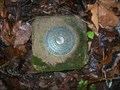 Image for Tennessee Valley Authority Survey Marker 1939
