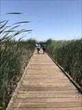 Image for Coyote Hills Regional Park Boardwalk - Fremont, CA