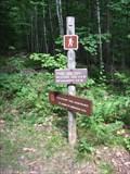 Image for Mount Waumbek
