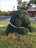 Image for Dog - Ennis, TX