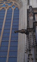 Image for Gargoyles of St. Michael and St. Gudula Cathedral, Brussels, BE, EU