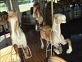 Image for West Endicott Park Carousel - Endicott, NY