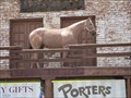 Image for Porters Palomino Horse - Scottsdale, Arizona