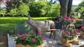 Image for Old Donkey Cart - Nunningen, SO, Switzerland