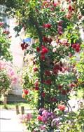 Image for La Roseraie du Jardin des Plantes - Paris, France