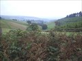 Image for Llan-Wen Hill, Powys, Wales