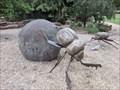 Image for Dung Beetles - McKenzie Reserve, Yarra Glen