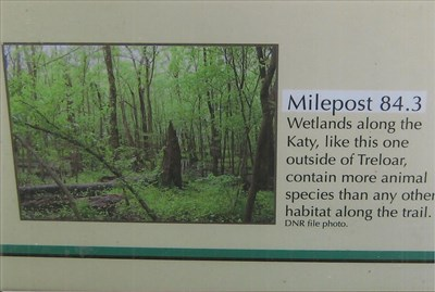 Wetlands along the Katy, like this one outside of Treloar, contain more animal species than any other habitat along the trail.
