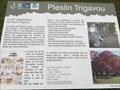 Image for Le site mégalithique - Pleslin-Trigavou, France