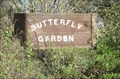 Image for Sonoma State Butterfly Garden - Rohnert Park, CA