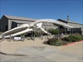 Image for Blue Whale Skeleton - Santa Cruz, California