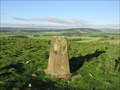Image for O.S. Triangulation Pillar - Dunnichen Hill, Angus.