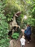 Image for Raptor en baby-raptor - de Oliemeulen - Tilburg, the Netherlands