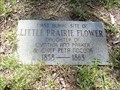 Image for FIRST Burial Site of Little Prairie Flower - Asbury Cemetery - Edom, TX