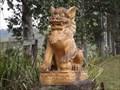 Image for Imperial Lions - Upper Orara, NSW, Australia