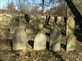 Image for židovský hrbitov / the Jewish cemetery, Cernovice, Czech republic