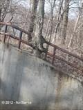 Image for Tree Enveloping Iron Fence - Dedham, MA