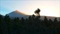 Image for Parque Nacional del Teide (Teide National Park) — Tenerife, Spain