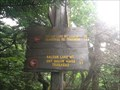 Image for Highest elevation on the Finger Lakes Trail (FLT)