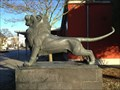 Image for Lion at city hall - Speyer, Germany