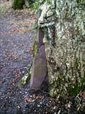 Image for Slate Eating Tree, Parc Meurig, Bethesda, Gwynedd, Wales