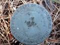 Image for Palasade Mtn Trailhead Survey Disk