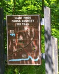 Image for Giant Pines Cross Country Ski Trail - Tahquamenon Falls State Park MI