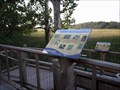 Image for HABITAT: Tidal and Freshwater Wetlands - Boundary Creek Natural Resource Area - Moorestown, NJ