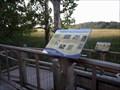 Image for HABITAT: Tidal and Freshwater Wetlands - Boundary Creek Natural Resource Area - Moorestown, NJ
