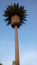 Image for Palm Tree Tower - Santa Clara, CA