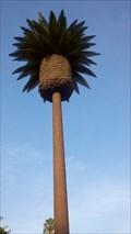 Image for Palm Tree Tower - Santa Clara, CA