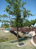 Image for 1 Lt. David T. Wright II tree - Veterans Memorial Park  -  Moore, OK