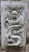 Image for Chinese Dragon