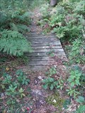 Image for Chief Noonday Trail Footbridge - Middleville, Michigan