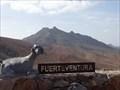 Image for Reserva de la Biosfera Fuerteventura - Canary Islands, Spain