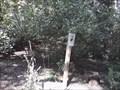 Image for Compton Gardens Monarch Waystation - Bentonville AR