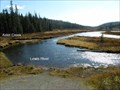 Image for CONFLUENCE - Aster Creek - Lewis River
