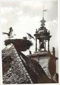Image for Rooftop of Hôtel de ville, Neuf Brisach - Alsace / France