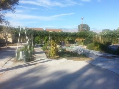 Benedictine Monastery Garden Tucson Az Community