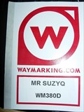 Image for Mr. SuzyQ