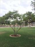 Image for Senator Andy Nichols - Phoenix, AZ