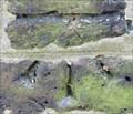 Image for Cut Bench Mark - St Mary Magdalene Church, Church Walk, Richmond, London, UK