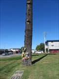 Image for Virgin Mary Image in a Tree - Colma, CA