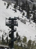 Image for ZipRider at Snowbird - Utah, USA