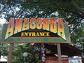 Image for Anaconda - King's Dominion - Doswell, VA