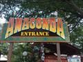 Image for Anaconda - King's Dominion - Doswell, VA