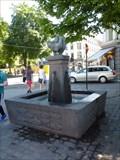 Image for Dyrefontene - Oslo, Norway