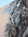 Image for Cheetah-Woman -Aspen, CO, USA